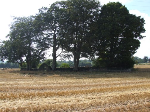 Ballinclay Burial Ground in small copse