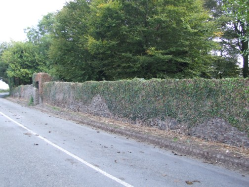 Front boundary wall on R744 approaching from Enniscorthy
