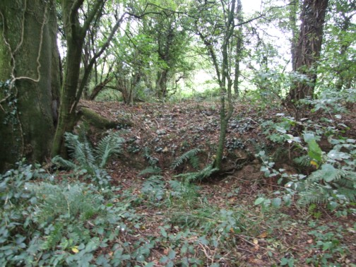 Large outer bank of old rath at Corlican Burial Ground