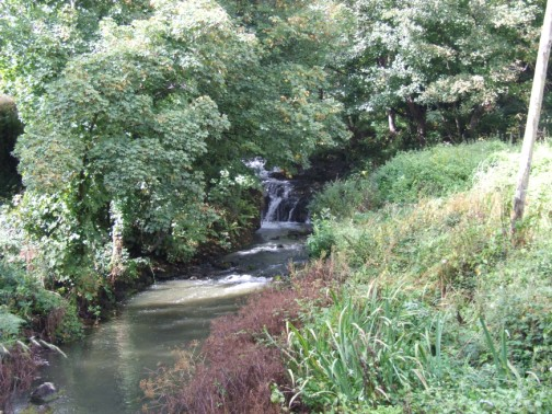 River Sow and Falls at Randall's Mill